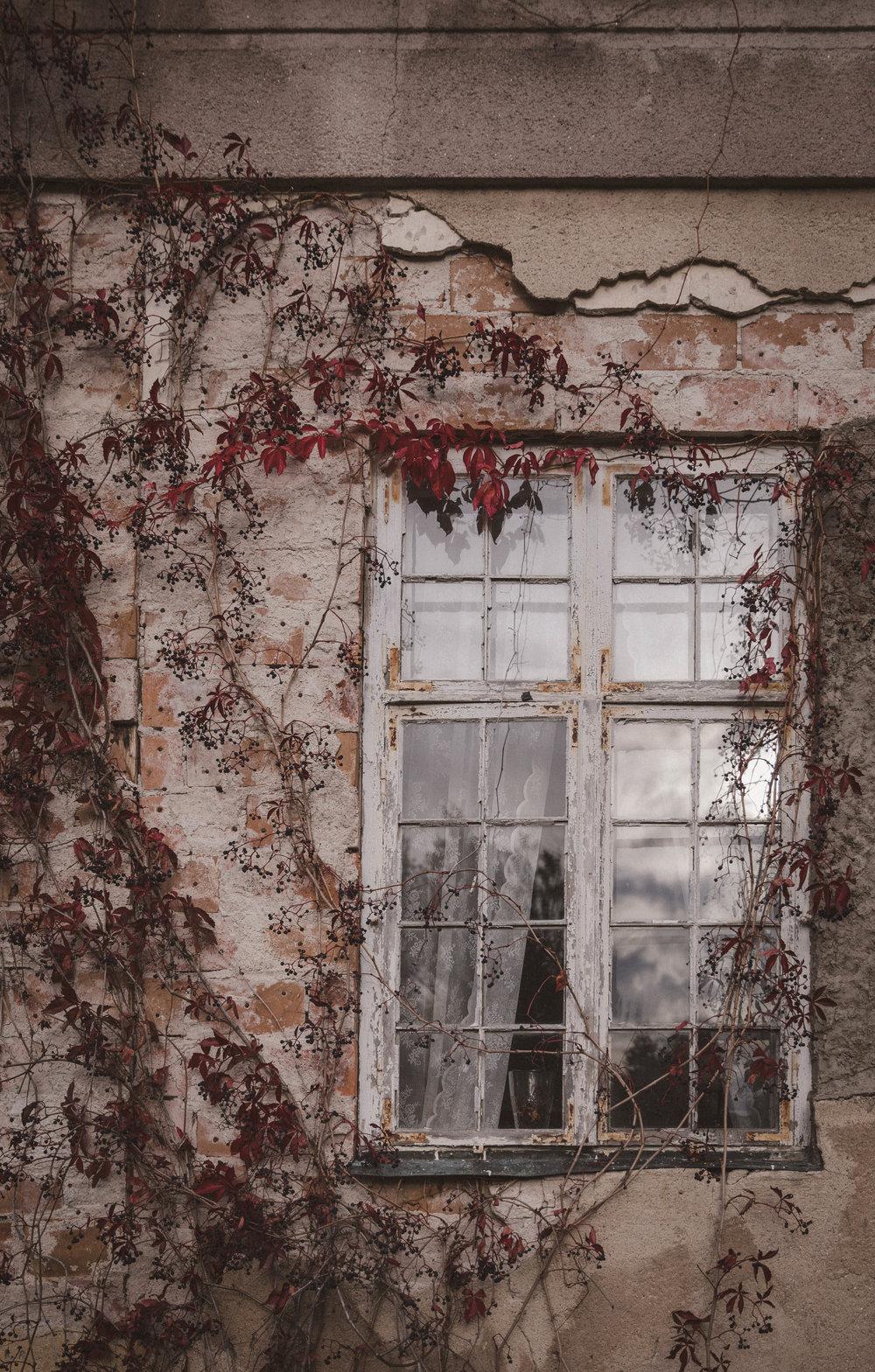 Villa Kassman Photo Emily Dahl-11.jpg