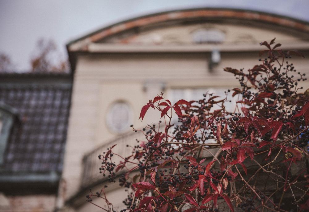 Villa Kassman Photo Emily Dahl-9.jpg
