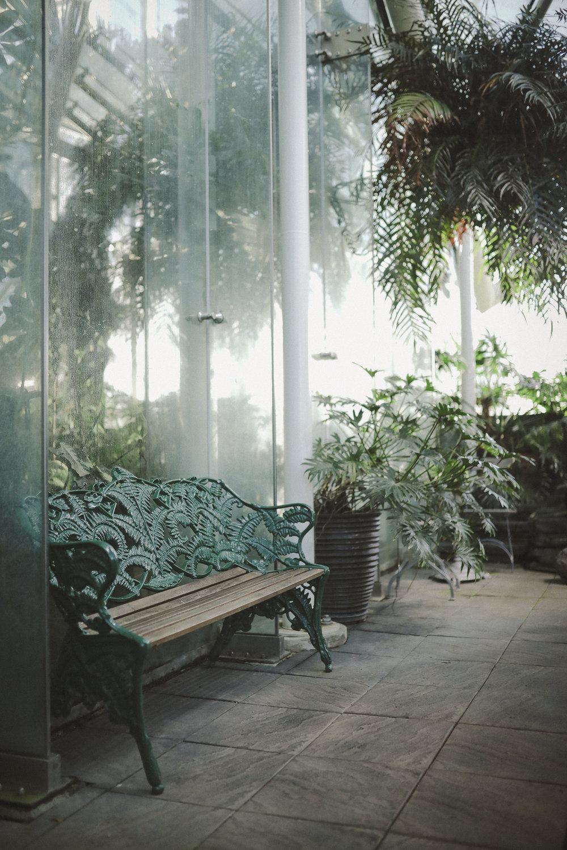 Edvard Andersons växthus Foto Emily Dahl-18.jpg