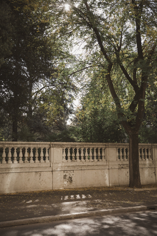 Rome Photo Emily Dahl-29.jpg