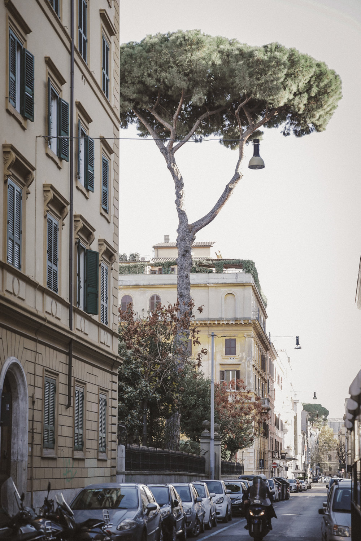 Rome Photo Emily Dahl-44.jpg