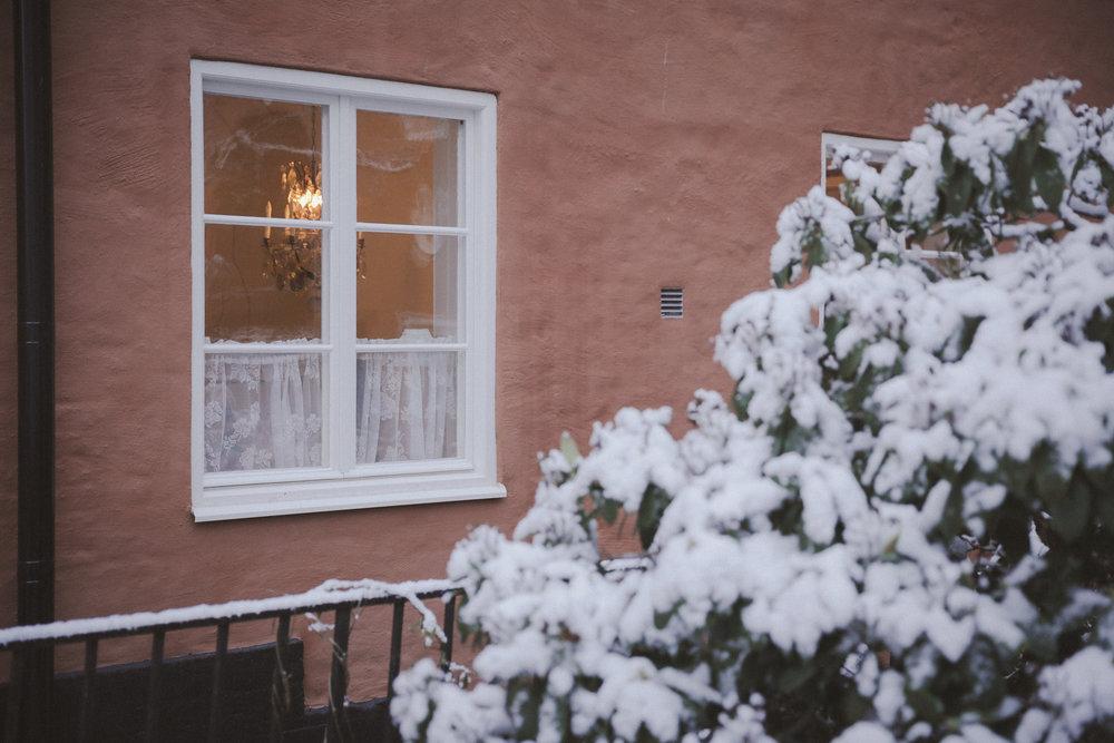 Snow Photo Emily Dahl-4.jpg