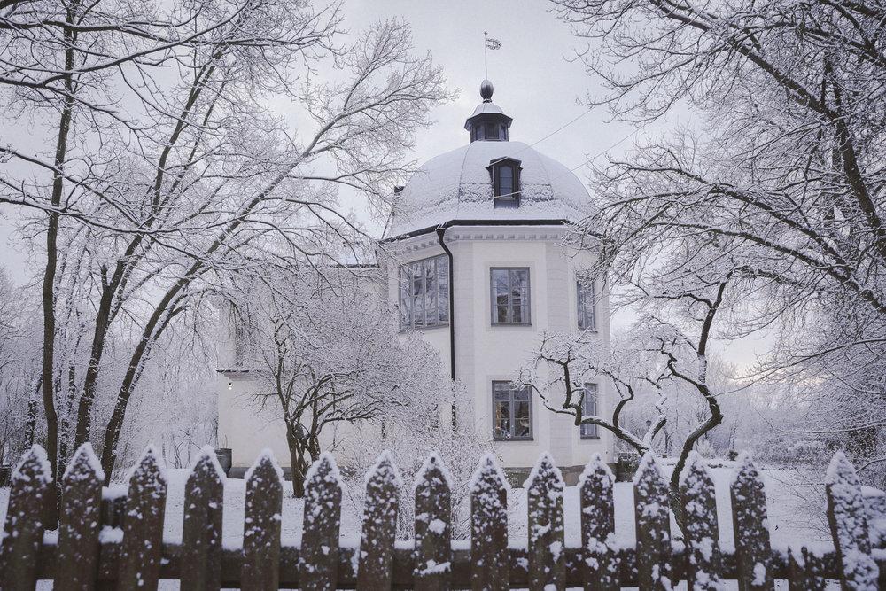 Snow Photo Emily Dahl-3.jpg