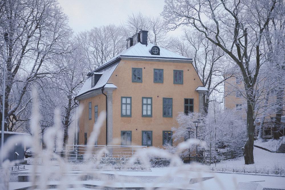 Snow Photo Emily Dahl-6.jpg