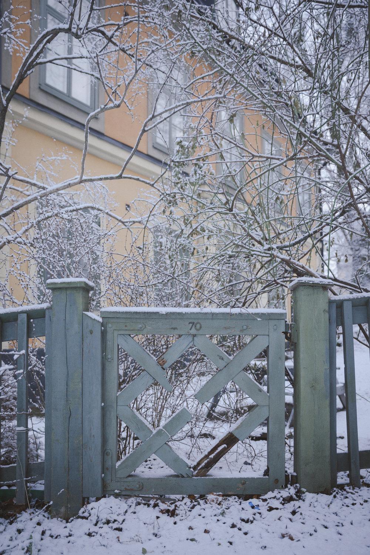 Snow Photo Emily Dahl-7.jpg