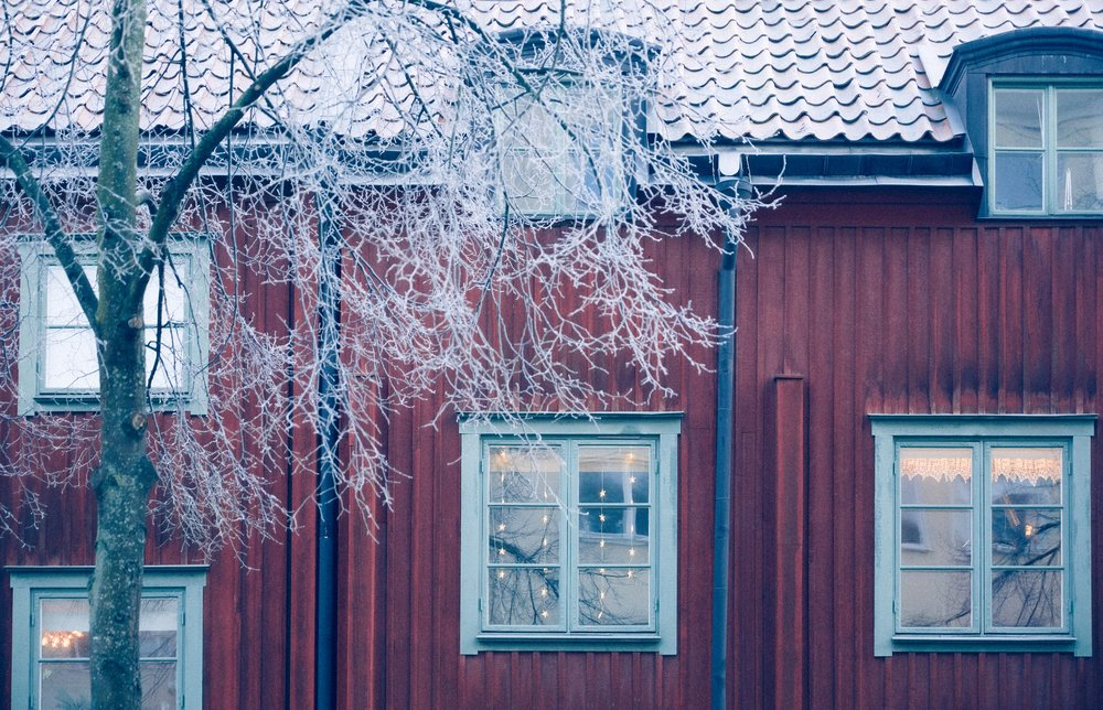 IMG_9501 Frosty.jpg