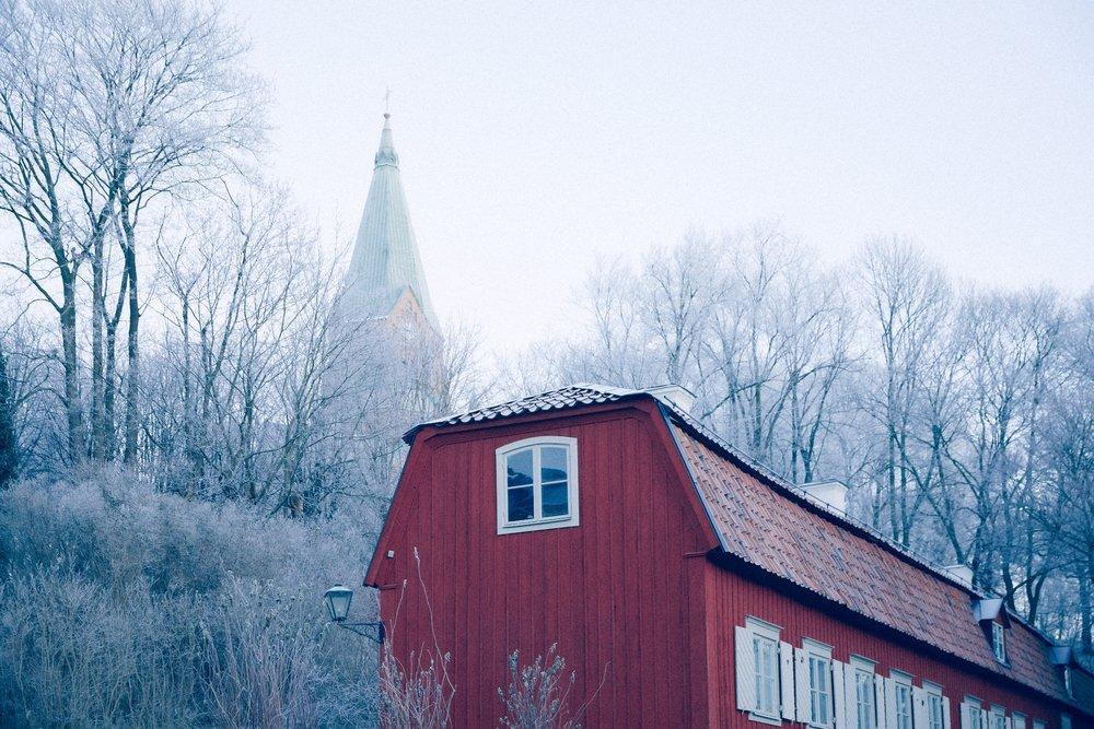 IMG_9503 Frosty.jpg