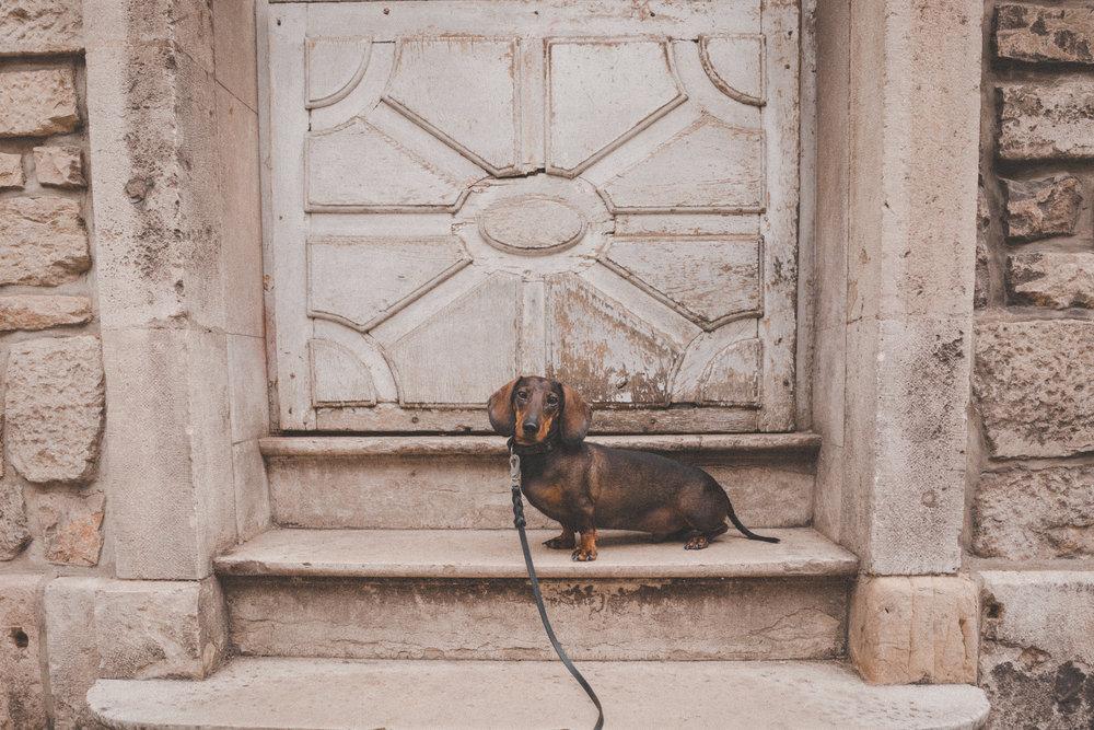 France and Spain Photo Emily Dahl-9.jpg