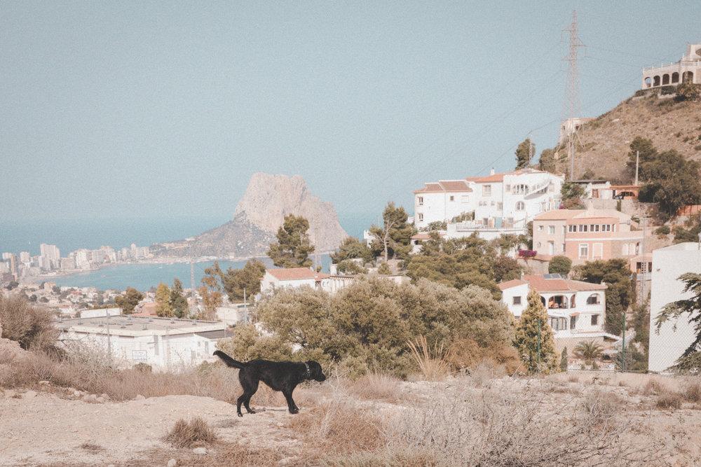 France and Spain Photo Emily Dahl-29.jpg