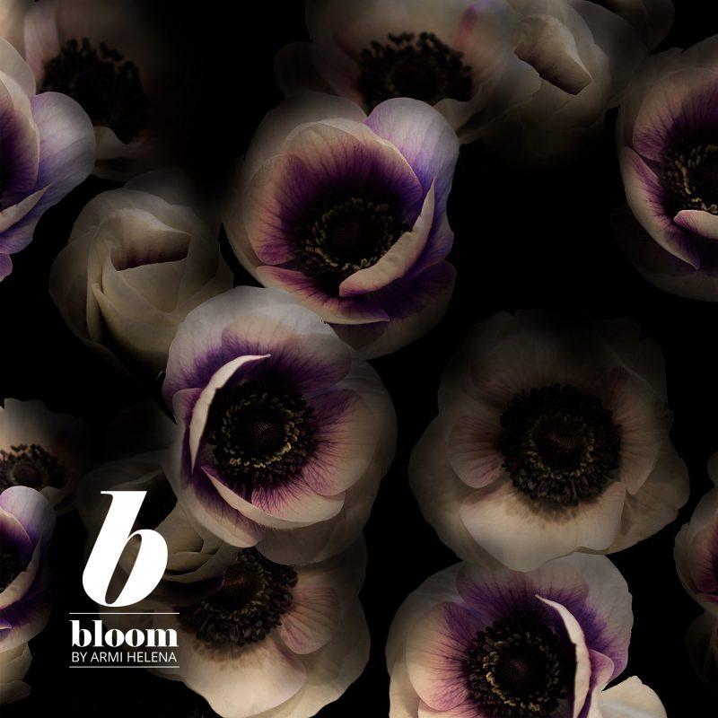 KikapiXBloom_anemone_.jpg