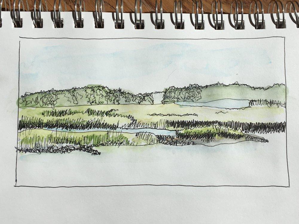 Lowcountry Marsh - Hilton Head