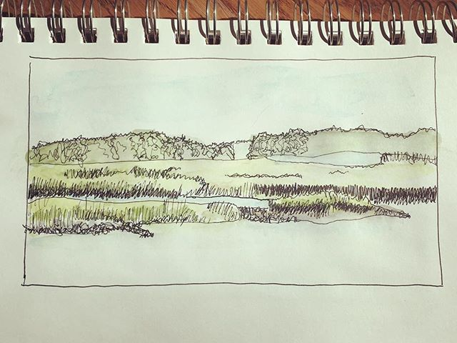Lunch break.  #mickygirardi #sketchbook #strathmore #watercolor #lowcountry #sakura #marsh #mrg #penandwash