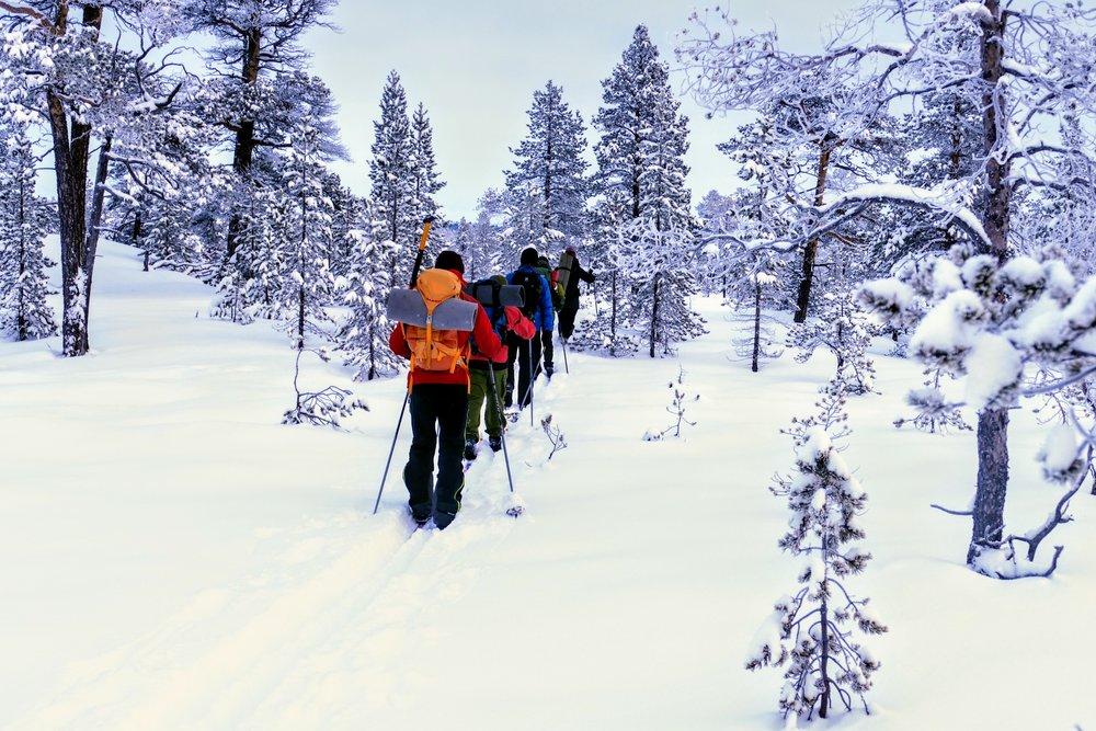 Hvorfor velge Norsk Mestring's Villmarksterapi?