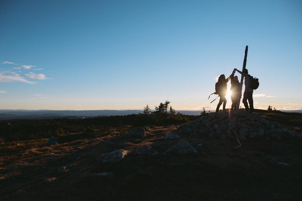 Hvilke sosiale resultater skaper Norsk Mestring sitt villlmakrsterapi-program?