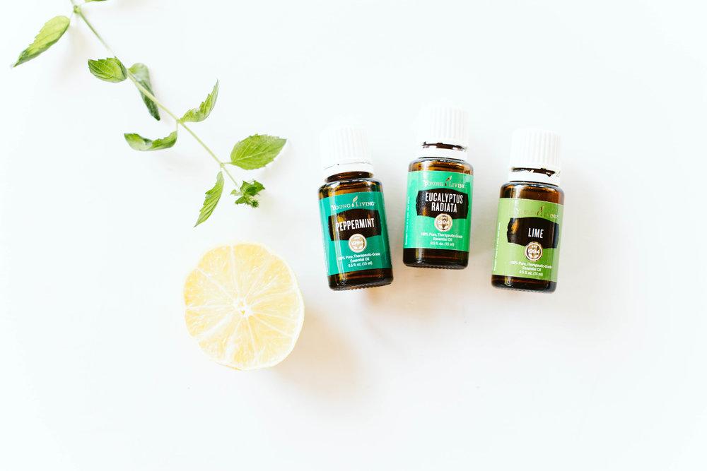 Sunflower-and-Fig-Essential-Oils17.jpg