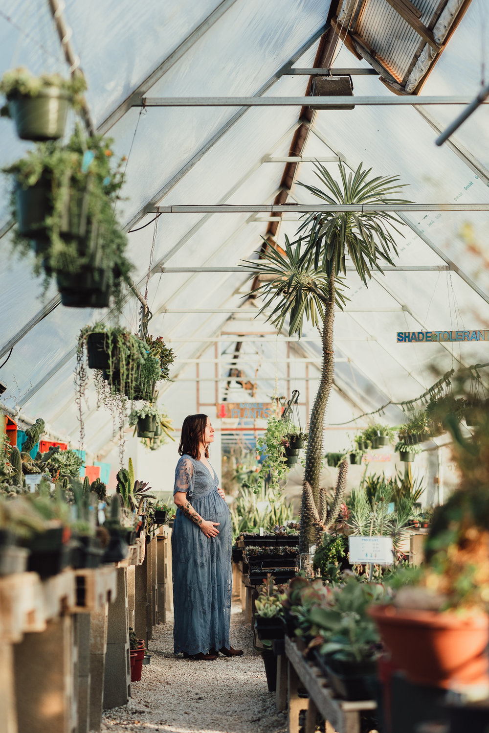 Austin Texas Lifestyle Maternity Photographer Photography Family Newborn Baby Blue Lace Dress Greenhouse