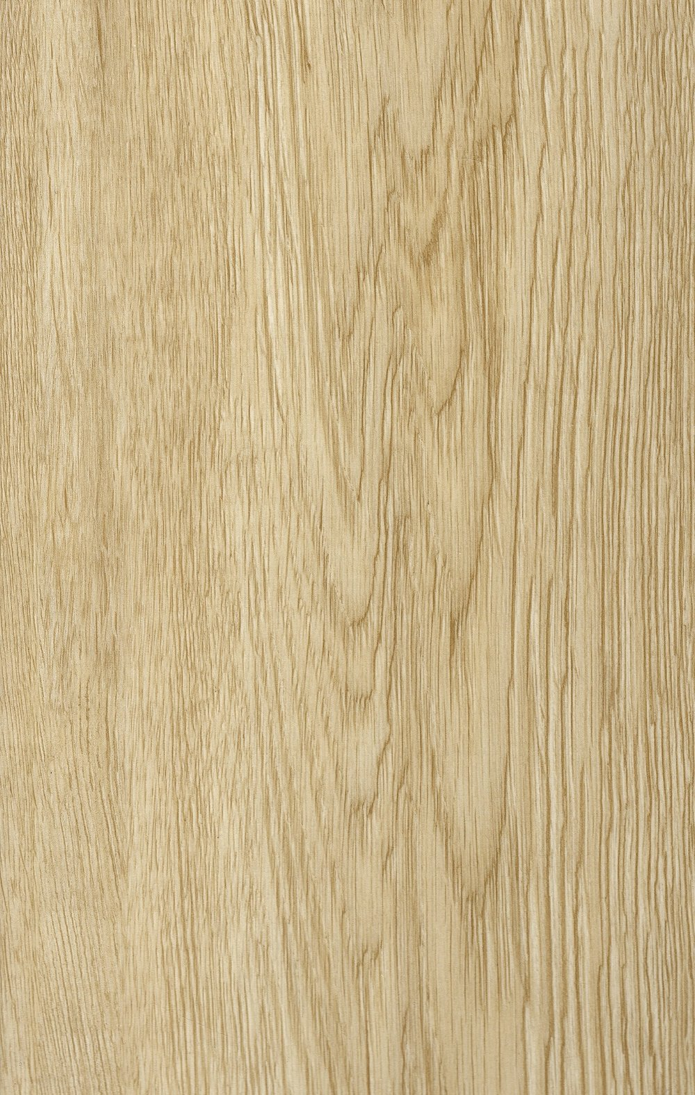 V11-W03013-Woodtick