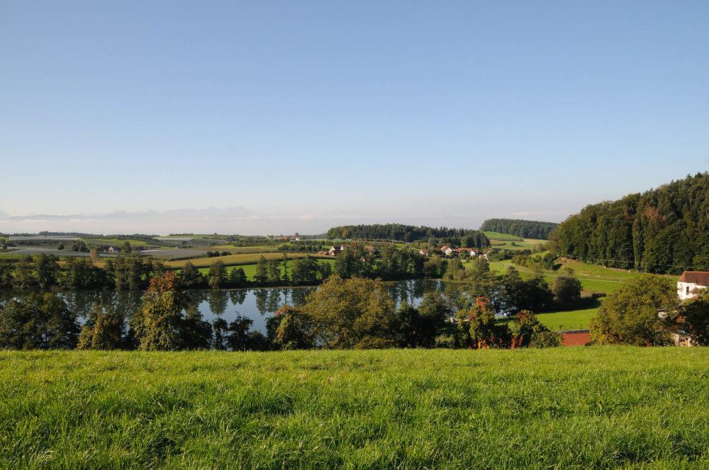Schleinsee mit Blick zum Gasthaus Seerose in Nitzenweiler bei Kressbronn am Bodensee