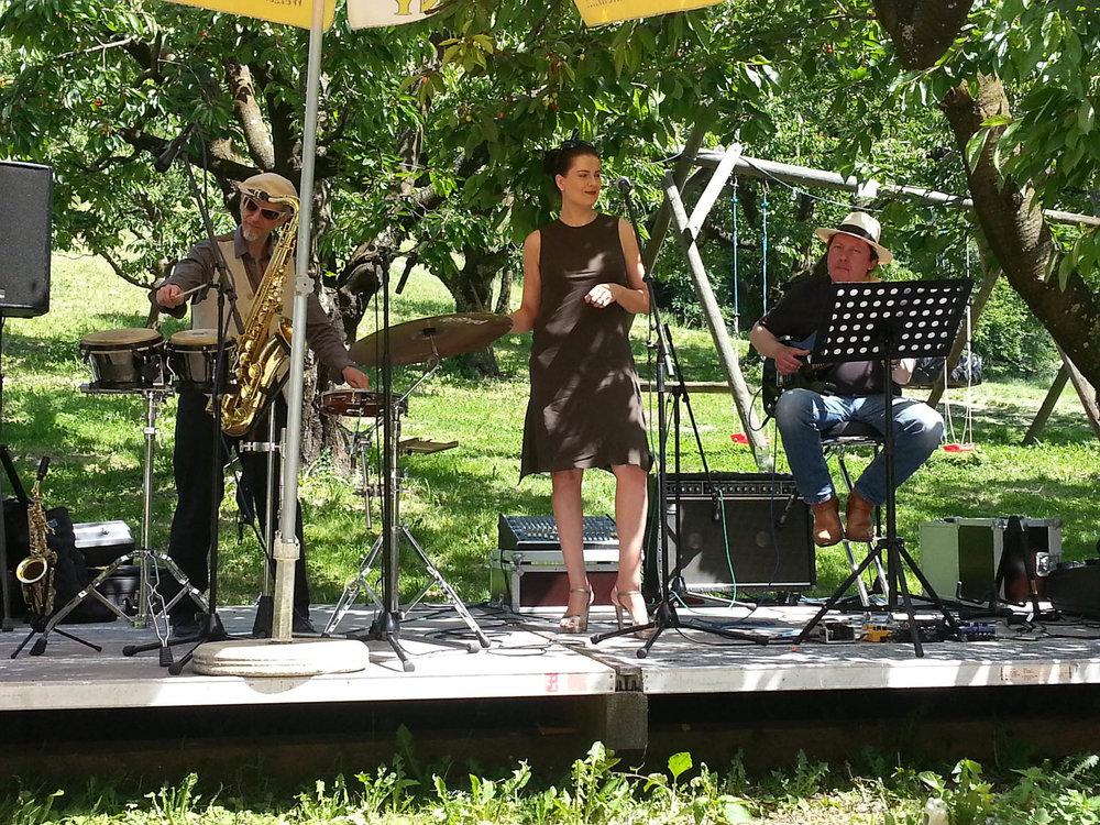 Livekonzert im Biergarten des Gasthaus Seerose in Nitzenweiler bei Kressbronn am Bodensee
