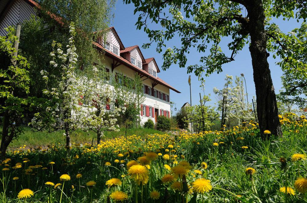 Gasthaus Seerose, idyllischen gelegen im schönen Hinterland des Bodensees bei Kressbronn.