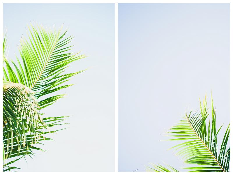 DarrenBesterPhotography_Bali2013_0036.jpg