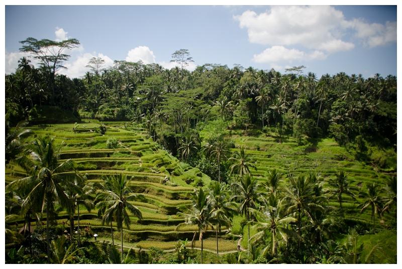 DarrenBesterPhotography_Bali2013_0124.jpg