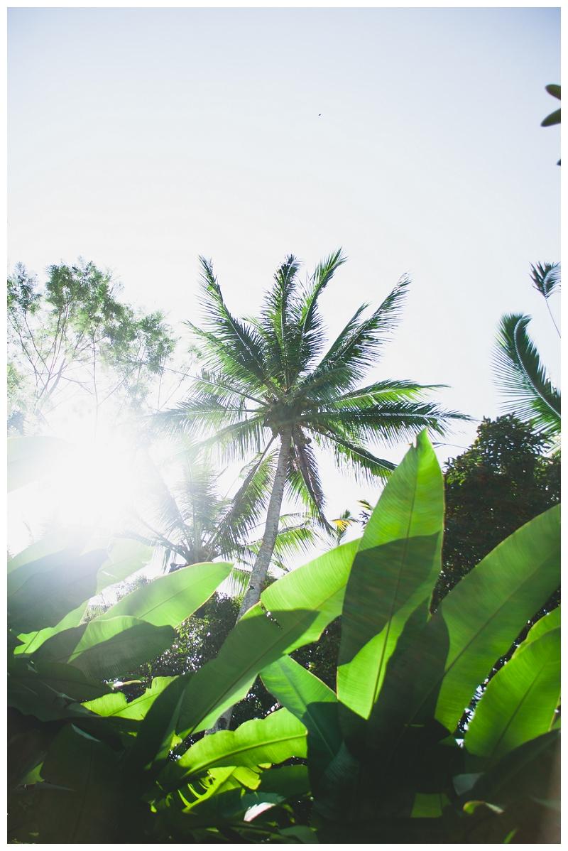 DarrenBesterPhotography_Bali2013_0126.jpg