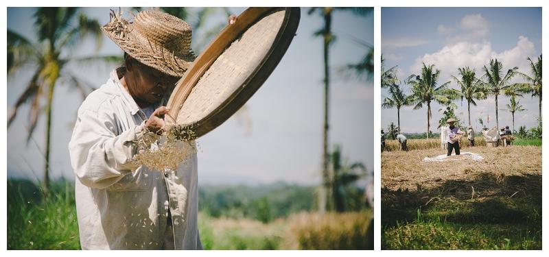 DarrenBesterPhotography_Bali2013_0129.jpg