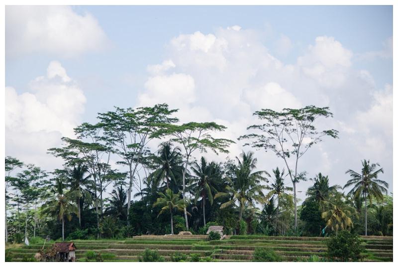 DarrenBesterPhotography_Bali2013_0150.jpg
