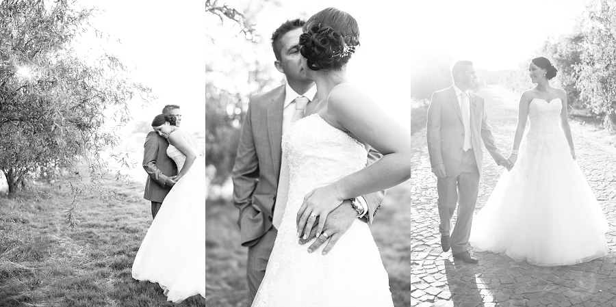 Darren Bester Photography - Cape Town Wedding Photographer - Sven and Michelle_0052.jpg