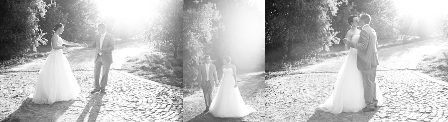 Darren Bester Photography - Cape Town Wedding Photographer - Sven and Michelle_0059.jpg