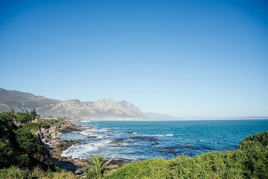 Darren Bester Photography - Cape Town Wedding Photographer - The Lee Wedding_0002.jpg