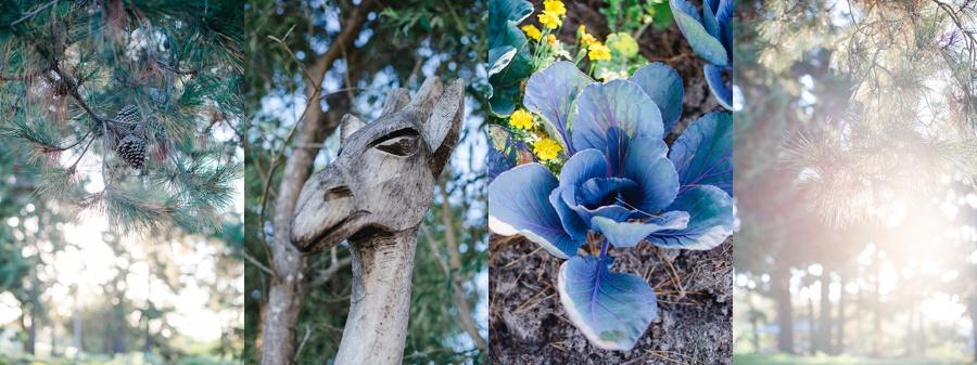 Darren Bester Photography - Garden Route - Emily Moon_0022.jpg