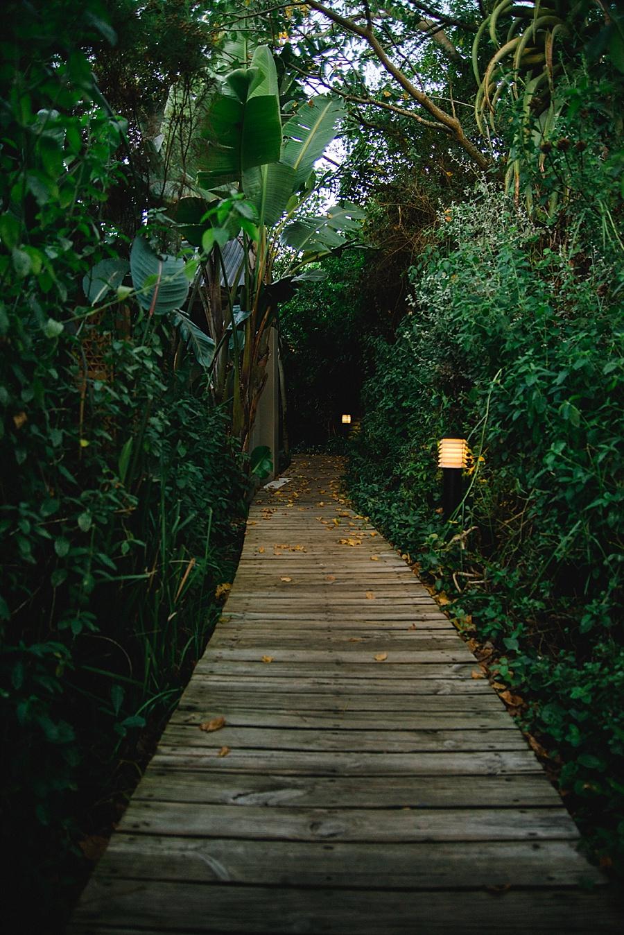 Darren Bester Photography - Garden Route - Emily Moon_0026.jpg