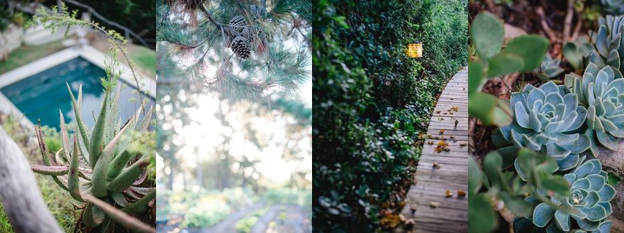 Darren Bester Photography - Garden Route - Emily Moon_0040.jpg
