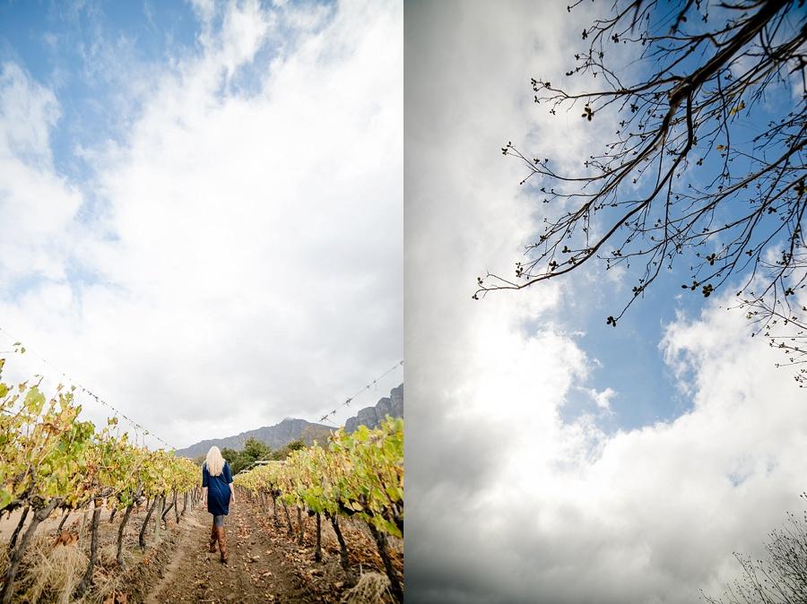 Darren Bester - Wedding - Photographer - Cape Town - Tulbagh_0012.jpg