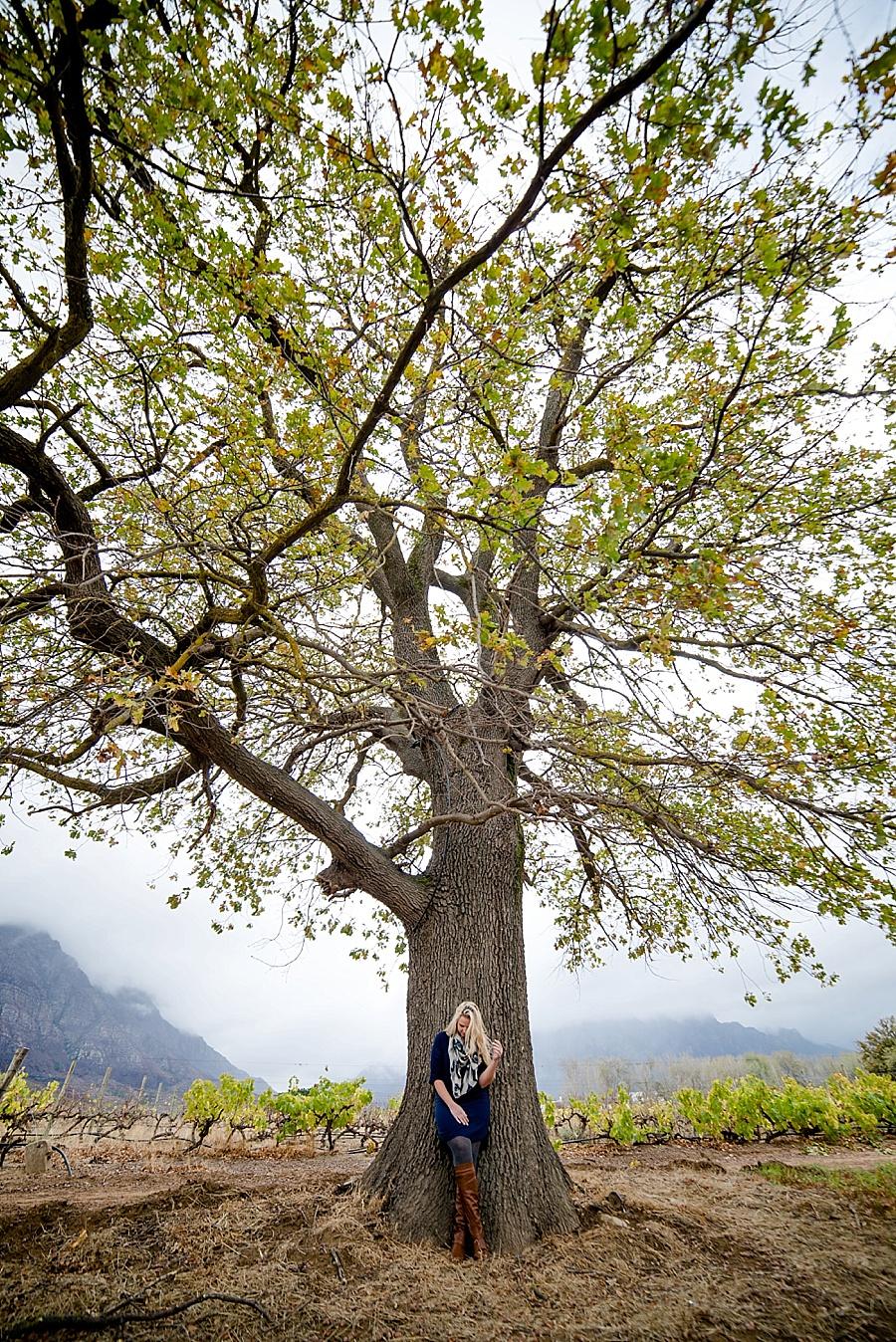 Darren Bester - Wedding - Photographer - Cape Town - Tulbagh_0023
