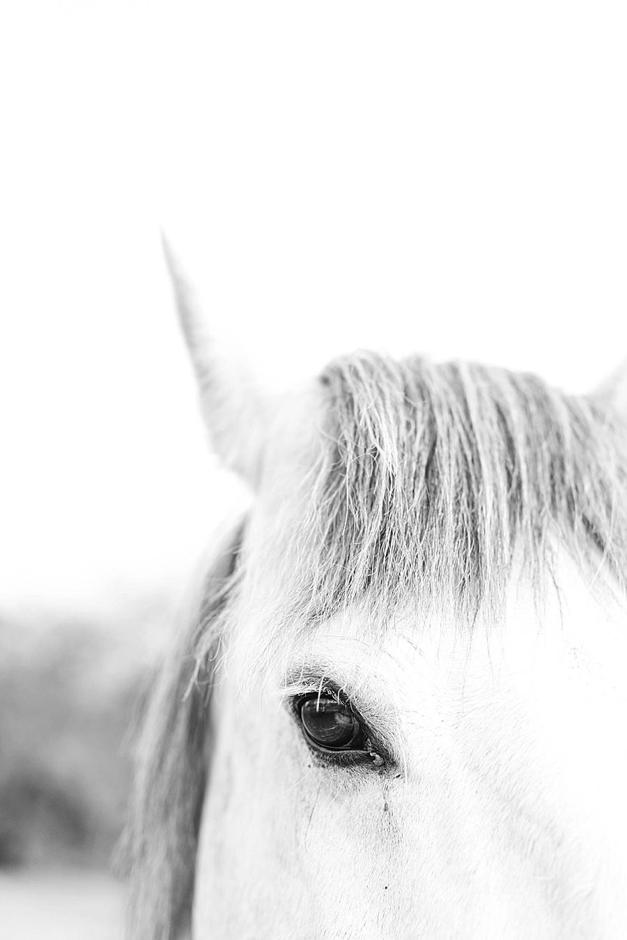 Darren Bester Photography - Photographer - Greyton - Weekend_0005.jpg