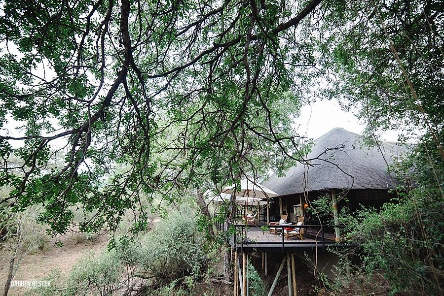Darren Bester - Photographer - Royal Malewane - Safari - Luxury Travel - Photographer_0002.jpg