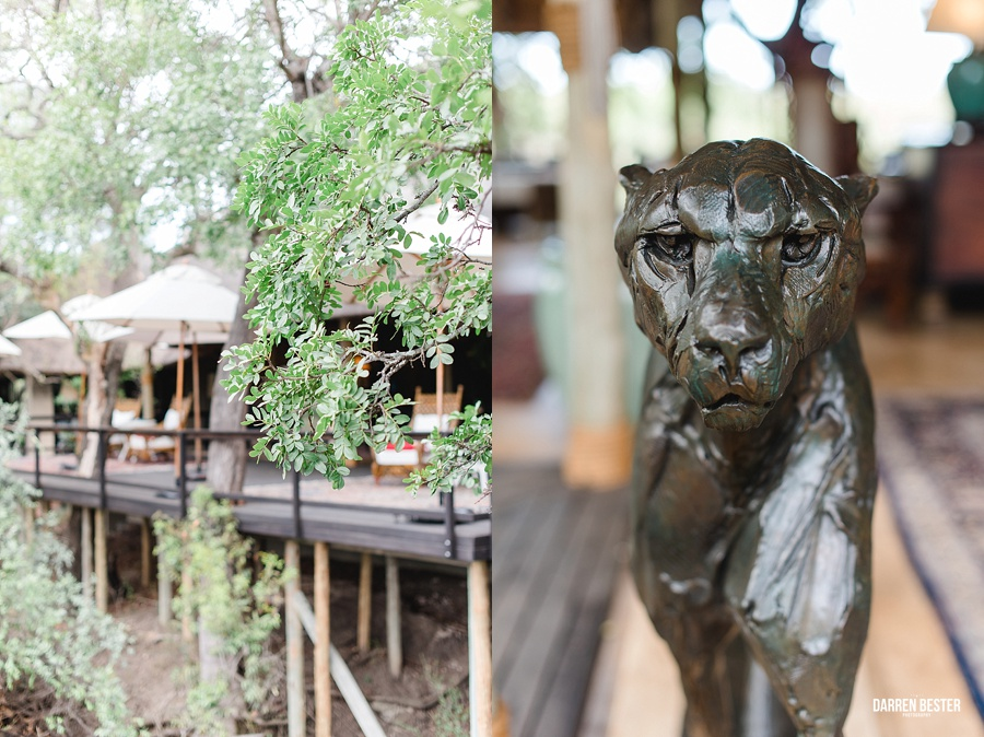 Darren Bester - Photographer - Royal Malewane - Safari - Luxury Travel - Photographer_0003.jpg