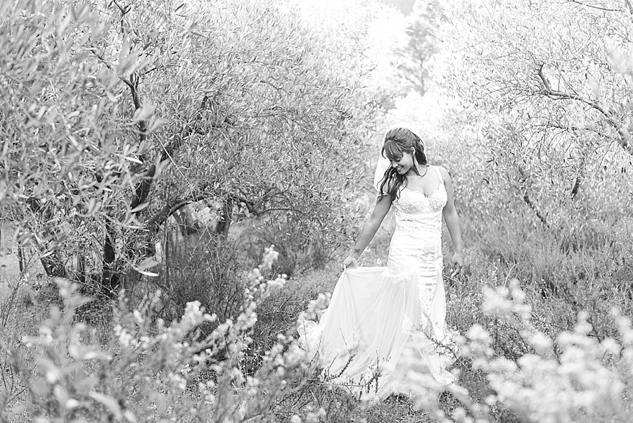 www.darrenbester.co.za - Cape Town Wedding Photographer - Cascade Manor - Neave and Michelle_0055.jpg