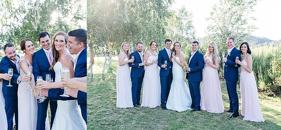 Darren Bester - Cape Town - Wedding Photographer - Lothian Vineyards - Dan and Janine_0039.jpg