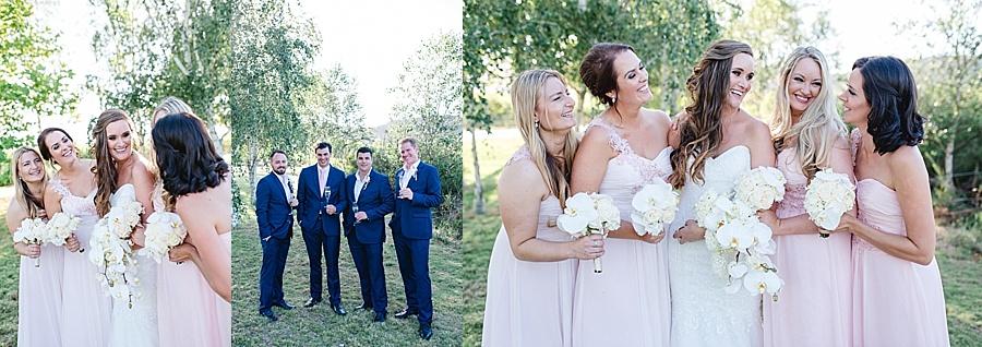 Darren Bester - Cape Town - Wedding Photographer - Lothian Vineyards - Dan and Janine_0041.jpg