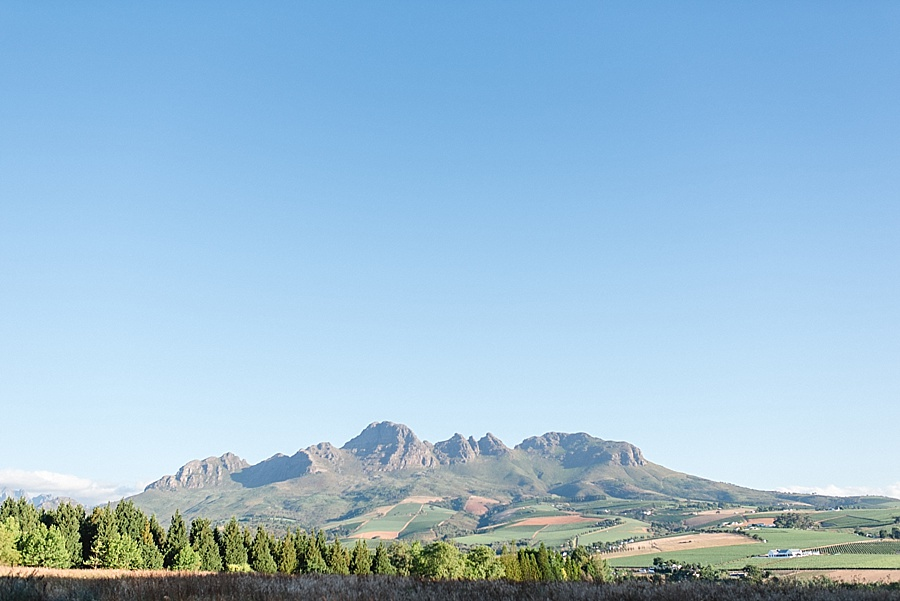 www.darrenbester.co.za - Cape Town Wedding Photographer - Forest 44 - Shayne and Chelsea_0015.jpg