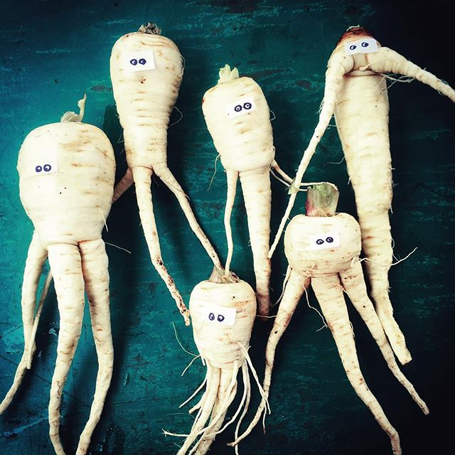 TBT to playing with your food on the farm. . . . . #isittimeyet #getmetothefarm #parsnipscomeinpeace #farmlife #throwbackthursday #gloriousorganics