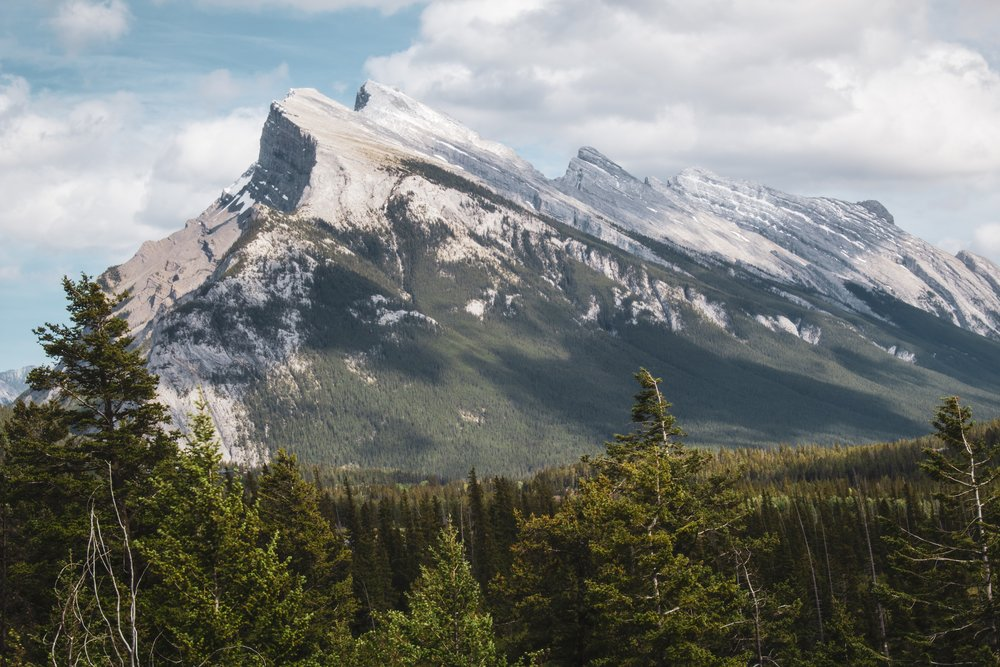 One of the biggest icons of Banff National Park. I've painted this mountain once and am craving to paint it again.