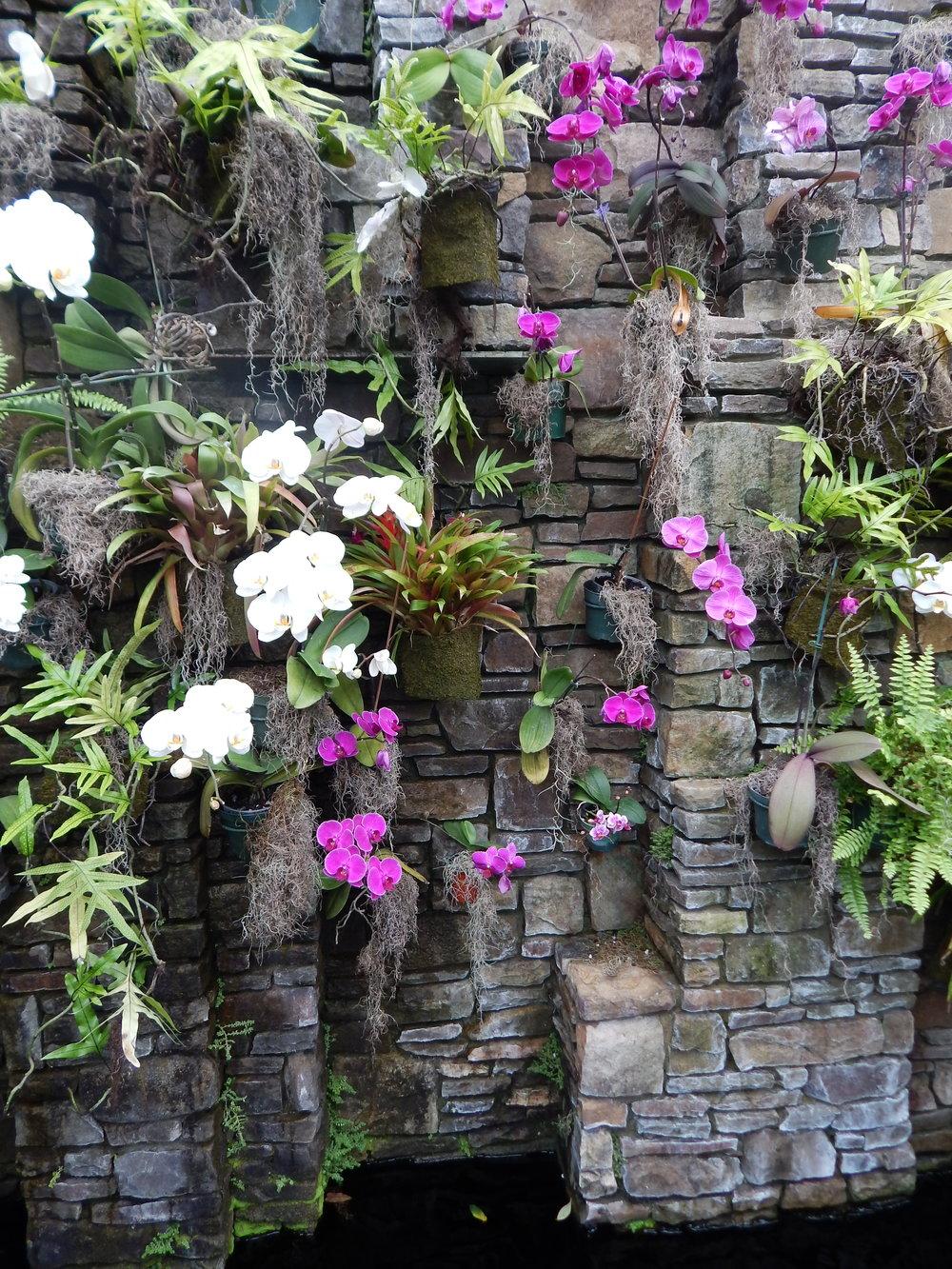 Daniel Stowe Botanical Gardens, Belmont NC