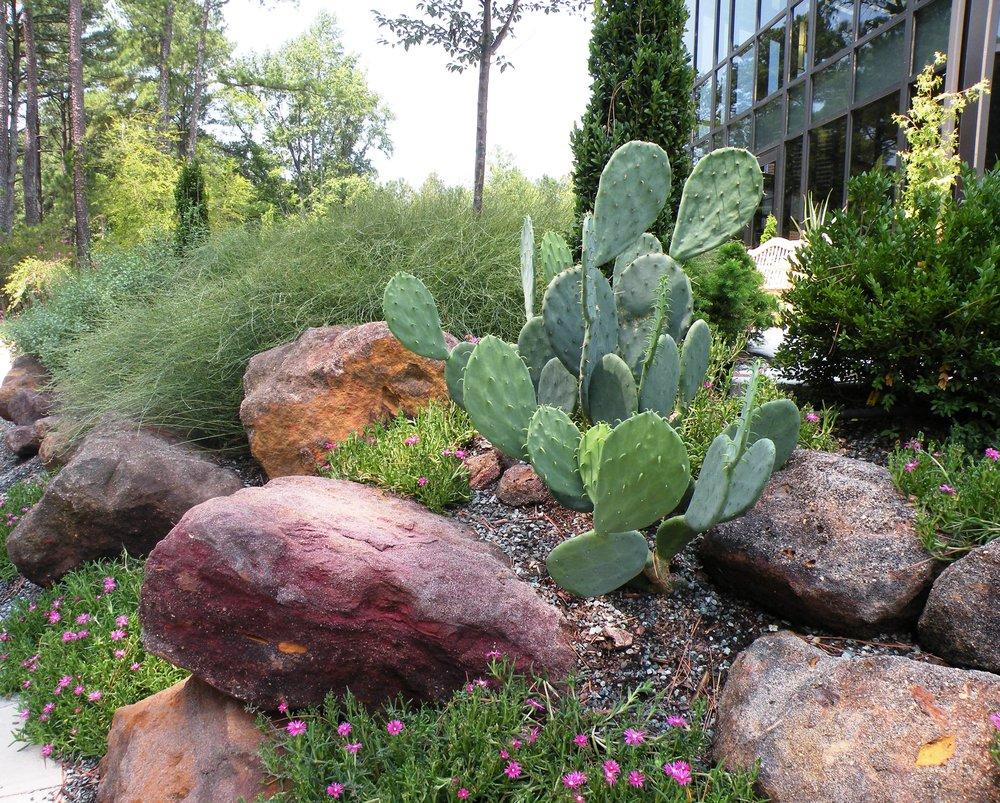 12 CFBG rock garden.jpg