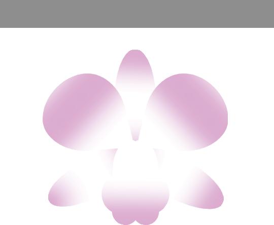 House of Raya's Company logo