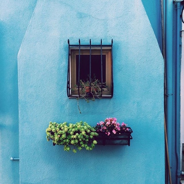 """Inspiration is the seed. Design but the flower."" ~Michael Langham  We can wonder what's behind the windows and walls, or we can be inspired by the stories we imagine. #tuesdaymorning #tuesdaymotivation #designquote #realestate #home #windowsill #inspiration #blue #homeexterior"